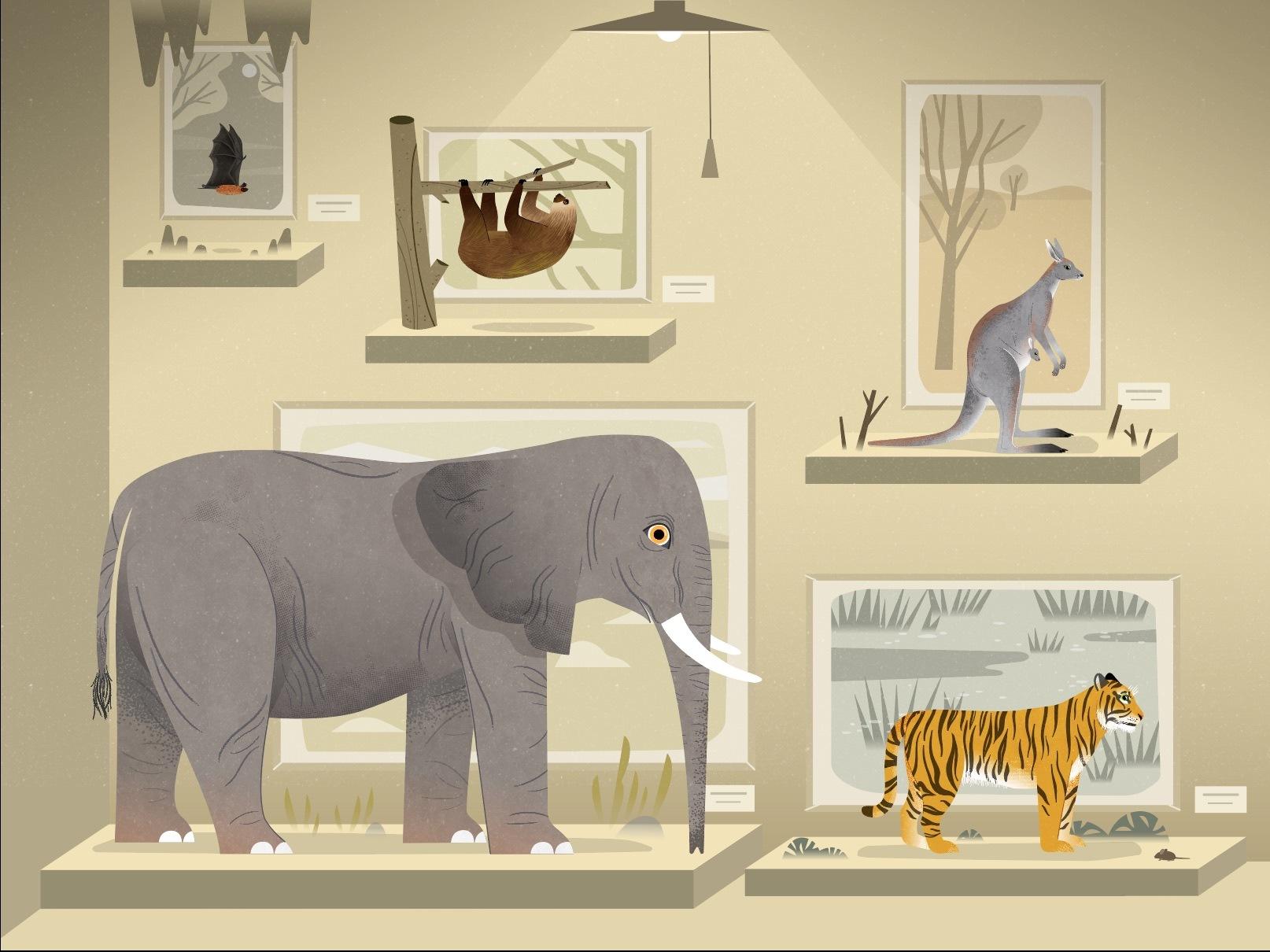 Mammals Teaser Scene