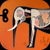 Mammals Icon Round