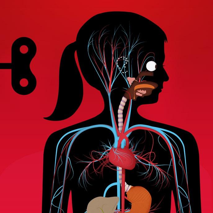 The Human Body app