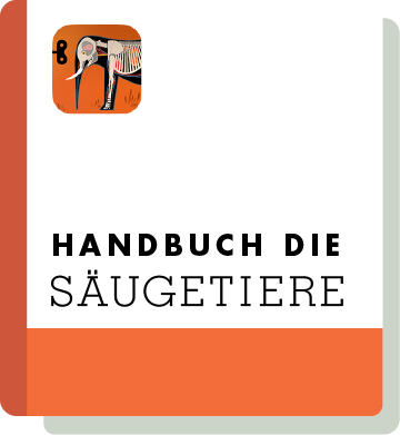 El09 Handbook Thumbnail De