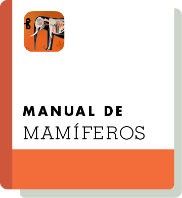 El09 Handbook Thumbnail Pt