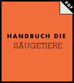 El Icon Handbook Thumb De