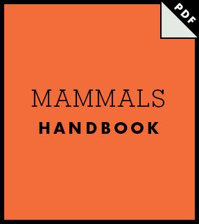 Mammals Handbook Icon EN
