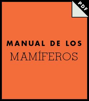 El Icon Handbook Thumb Es