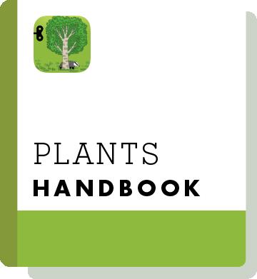 El02 Handbook Thumbnail En