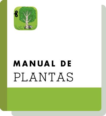 El02 Handbook Thumbnail Es