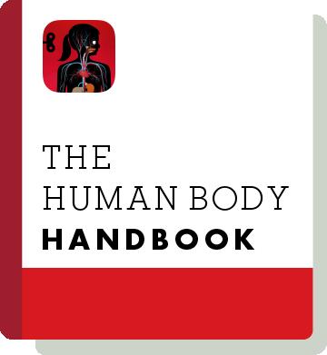 El01 Handbook Thumbnail En