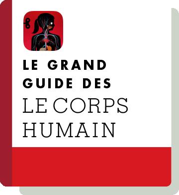 El01 Handbook Thumbnail Fr