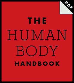 el1-handbook-thumb-en