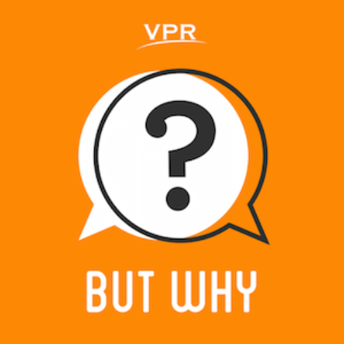 But Why Artwork Vpr Jory Raphael 20160401