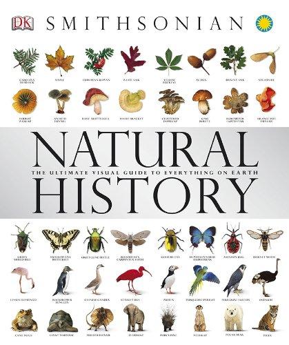 natural-history-smithsonian-hero