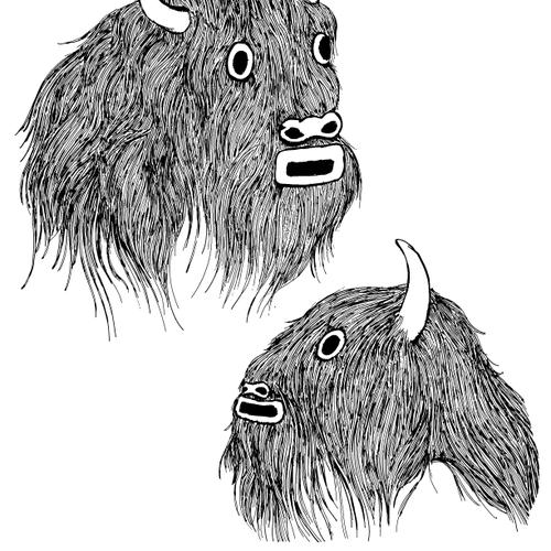 UmarRashid BuffaloHeads