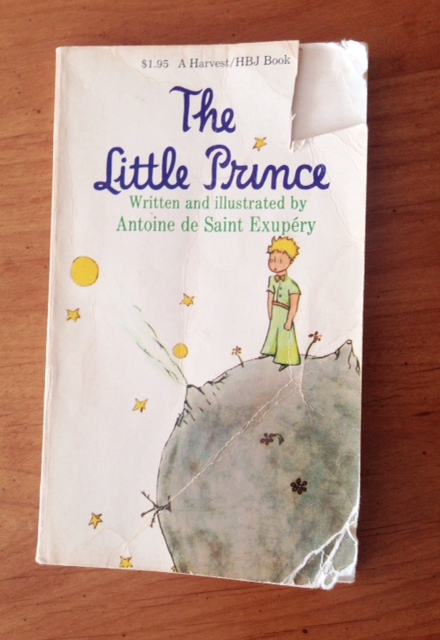the-little-prince-hero